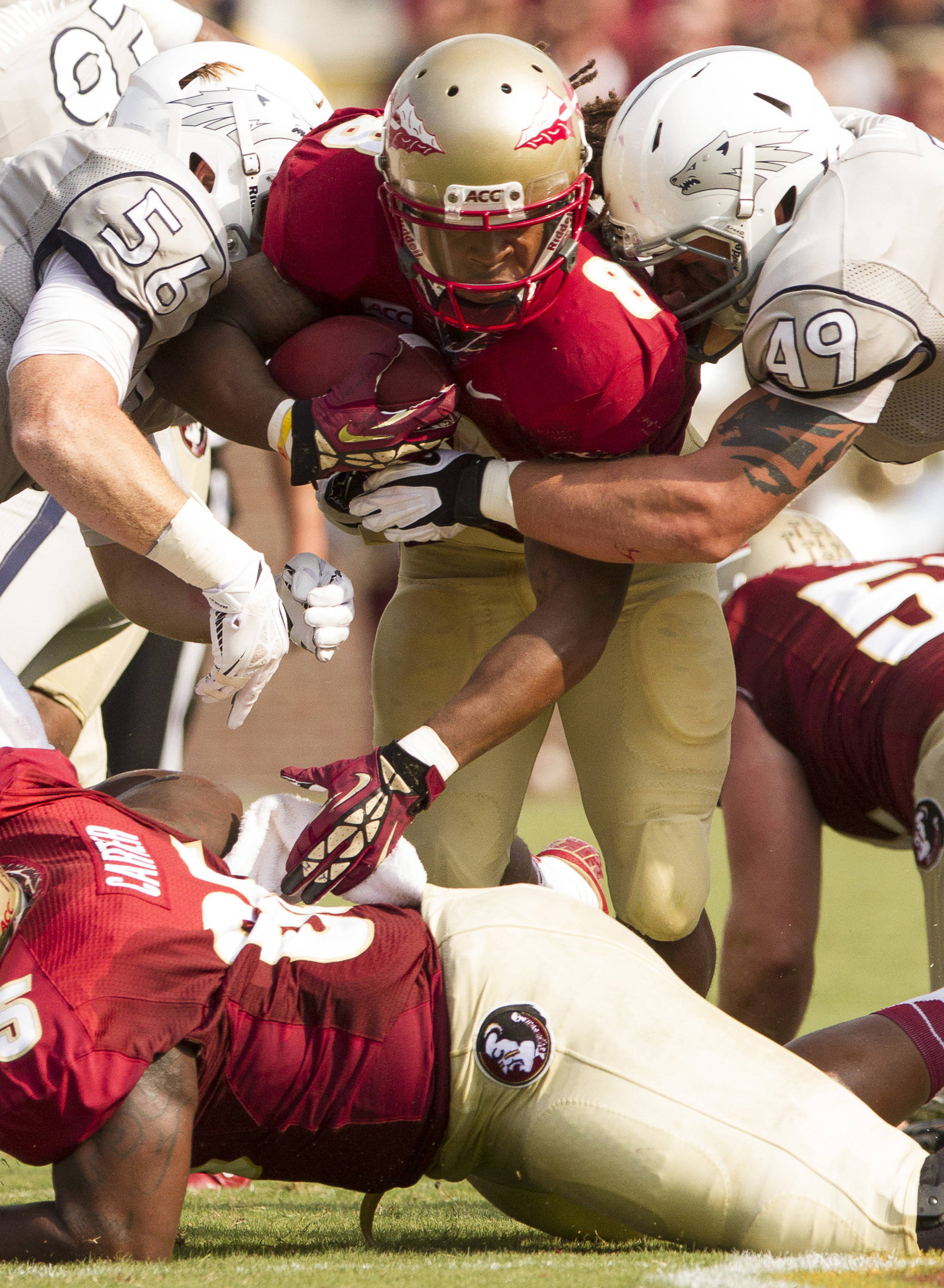 Devonta Freeman (8) carries the ball during FSU's 62-7 win over Nevada on Saturday, Sept 14, 2013 in Tallahassee, Fla.
