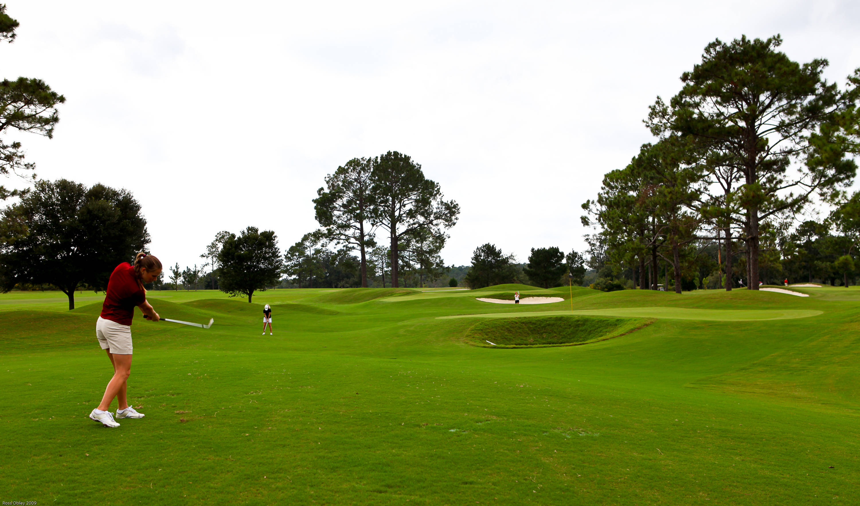 Golf Chipping Area