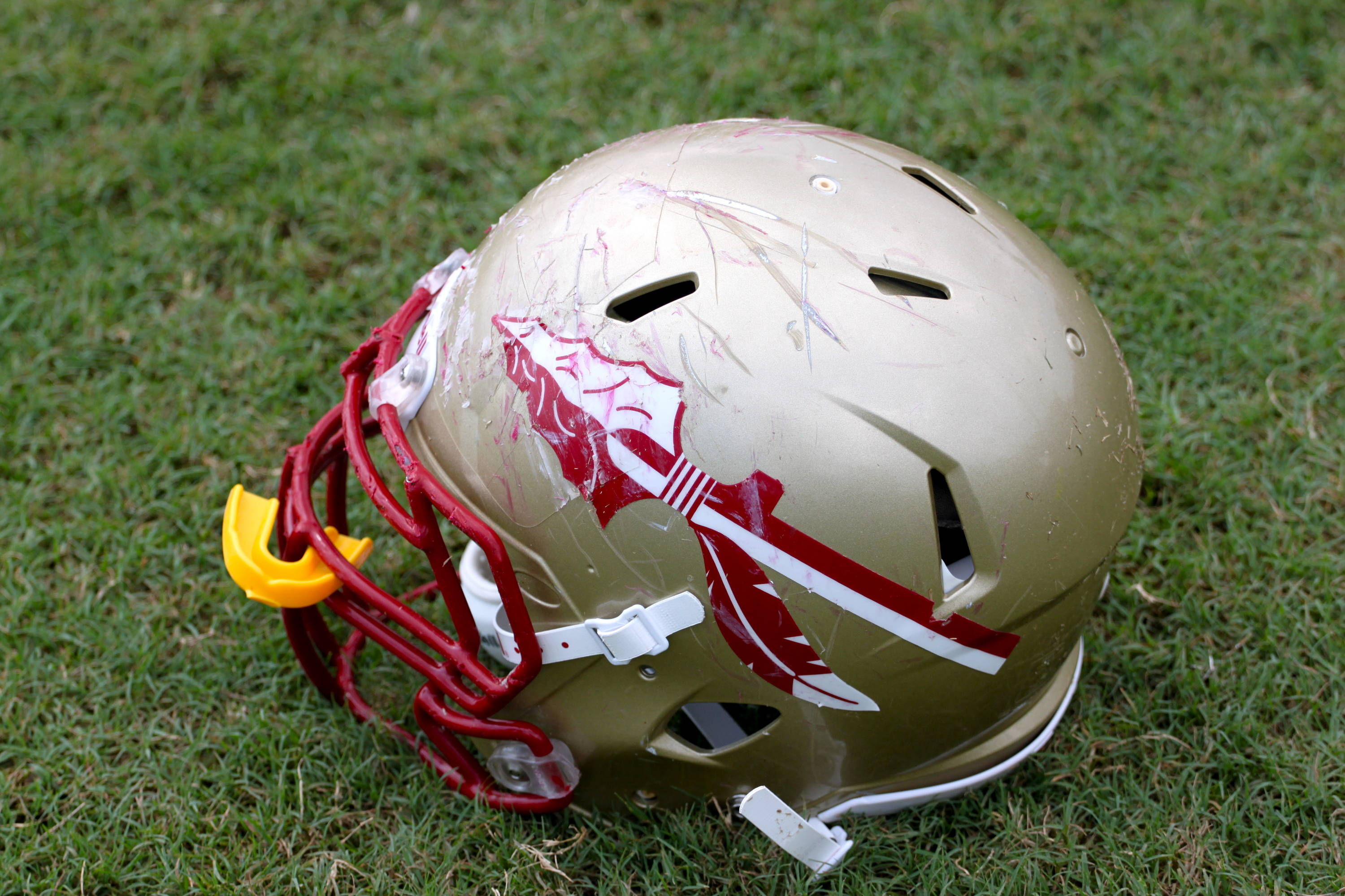 Florida State Football Helmet