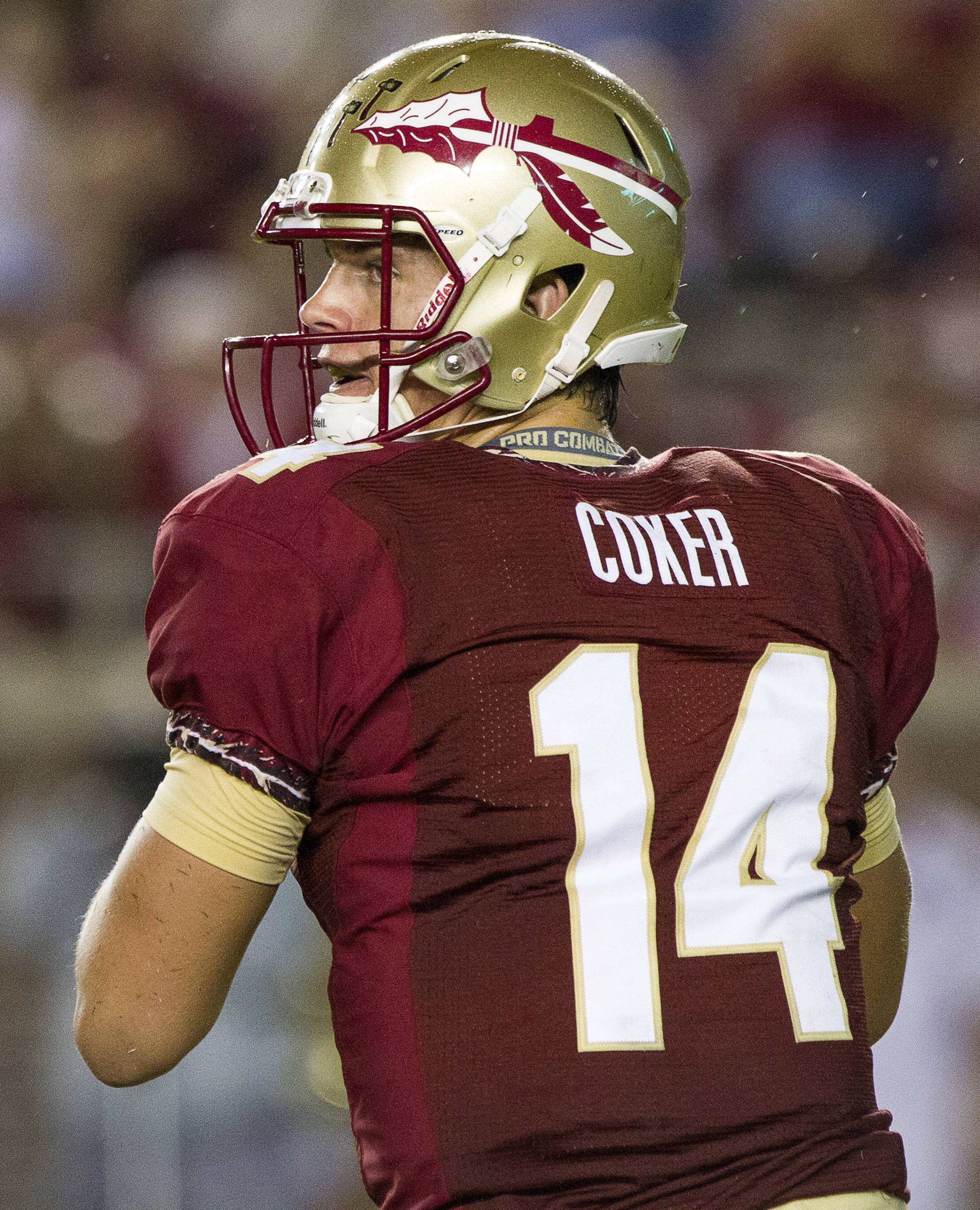 Jacob Coker (14) drops back to pass during FSU Football's 54-6 win over Bethune-Cookman on September 21, 2013 in Tallahassee, Fla