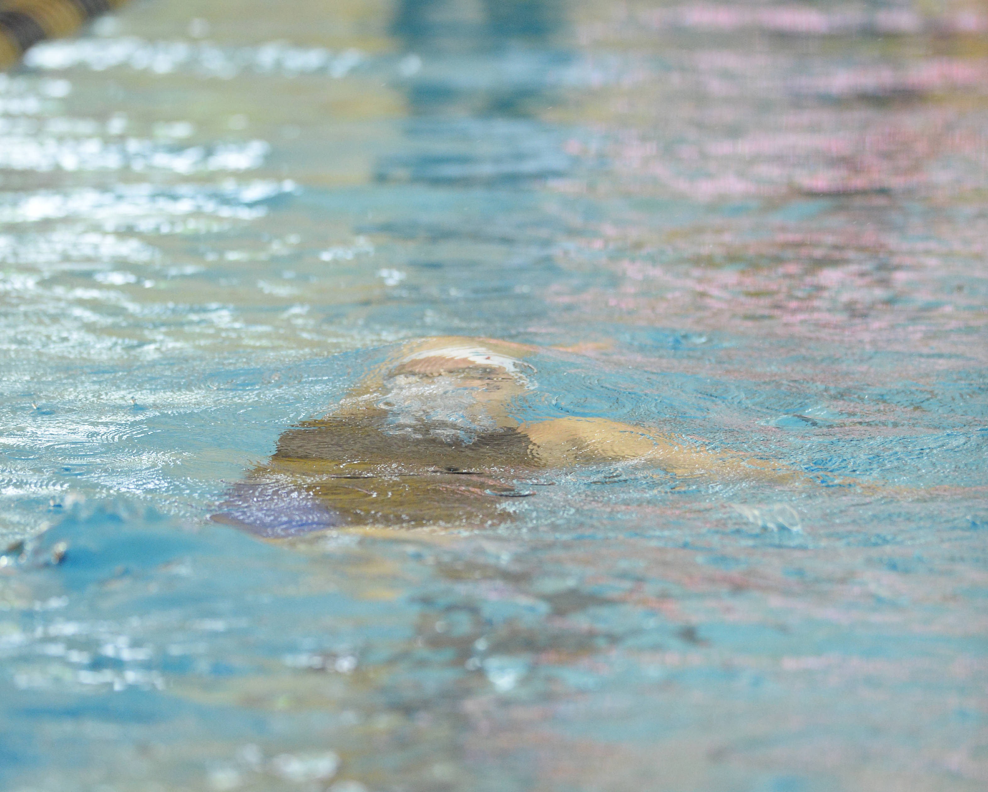Bianca Spinazzola uses her underwater speed in the 100 back - Mitch White