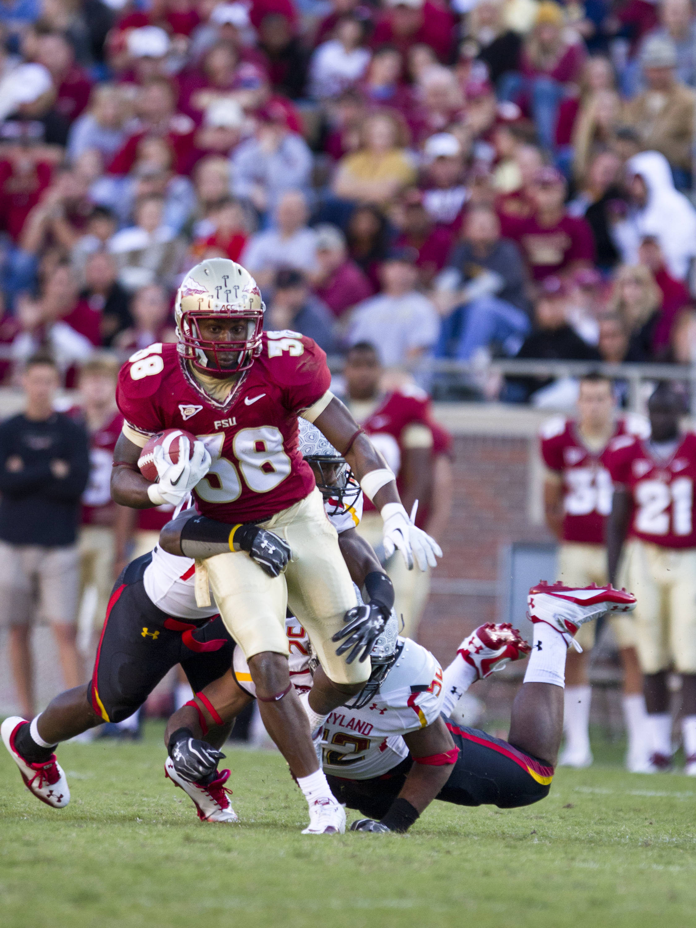 Jermaine Thomas (38) carries the ball down field during the football game against Maryland in Tallahassee, Florida on October 22, 2011.
