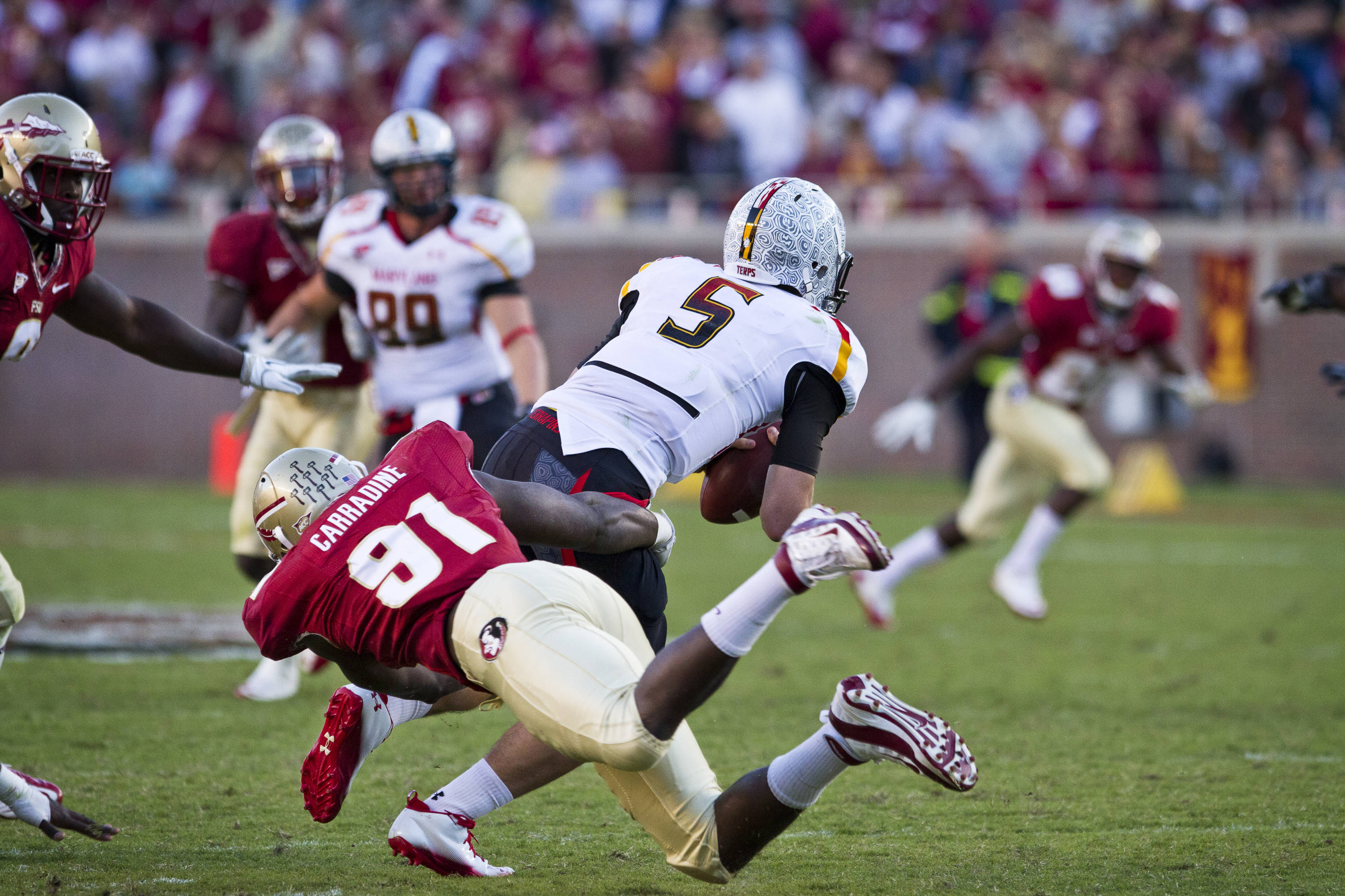 Cornellius Carradine (91) sacks the Maryland quarterback during the football game against Maryland in Tallahassee, Florida on October 22, 2011.