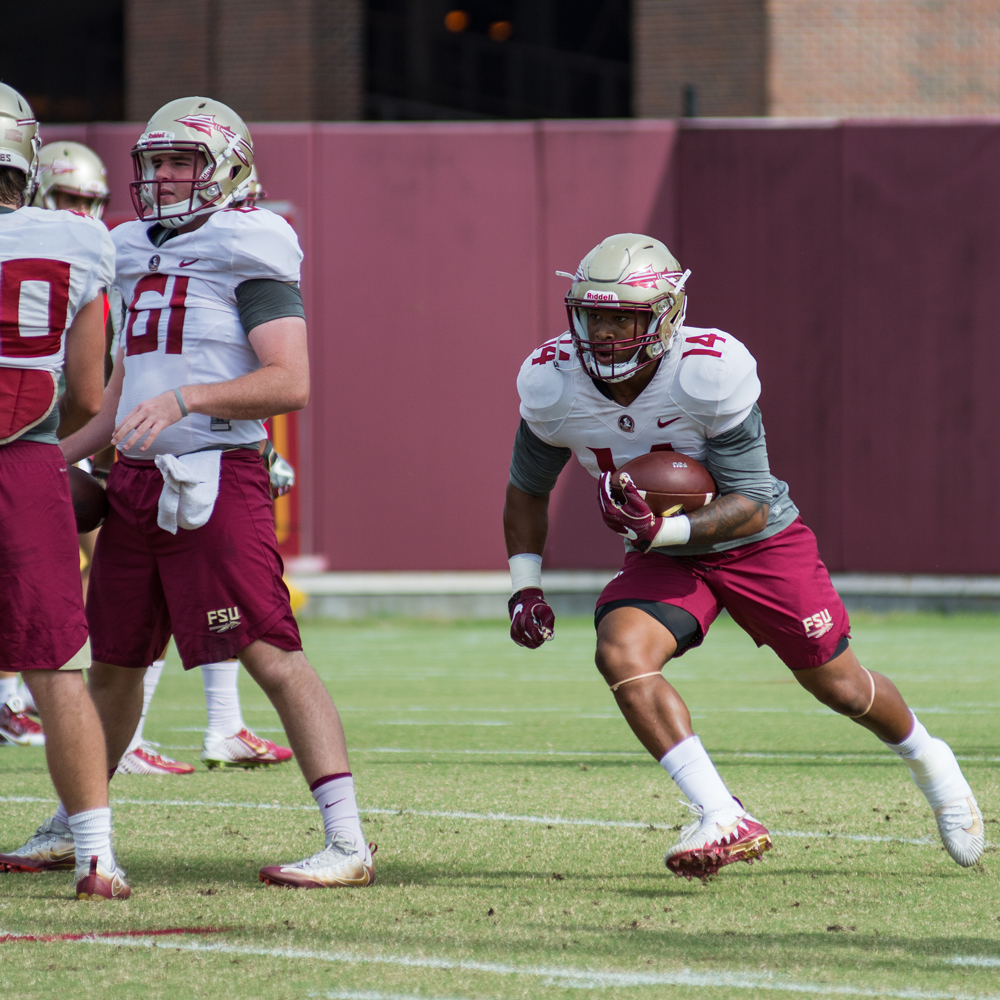 Photo Gallery: #NolesCamp Day 19