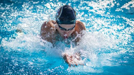 NCAA Championships Begin for Swimming and Diving